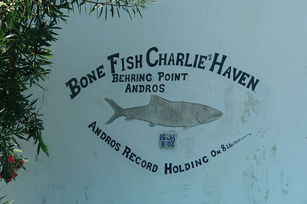 Bone Fish Charlie's Haven.  Behring Point, Andros Island