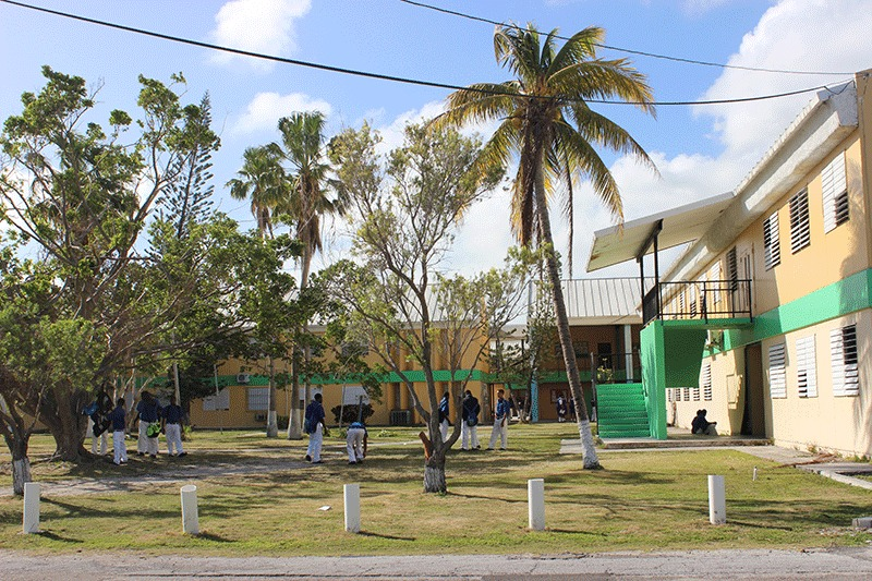 The campus of the current Government High School  at Yellow Elder Gardens